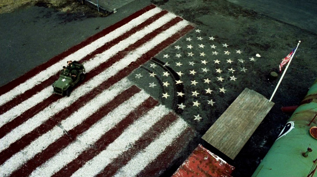 drivingflag.jpg