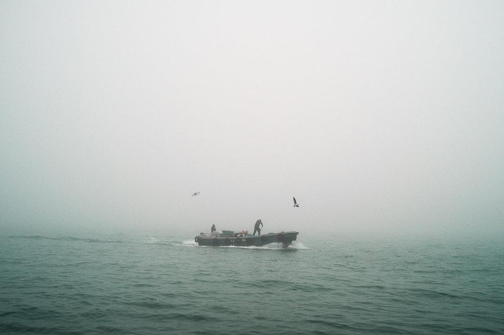 Neverland-16.jpg