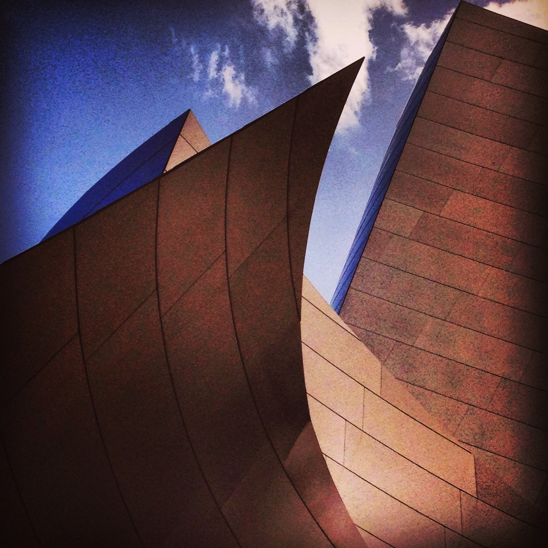 WALT DISNEY CONCERT HALL - BROWN 1