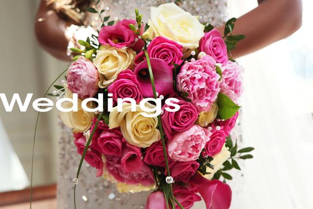 coming-soon-weddings.jpg