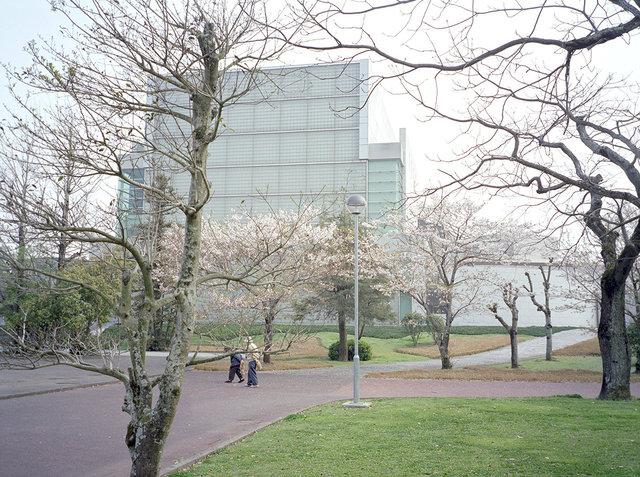Cultural park/Miyazaki