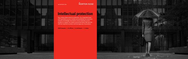3884-Norton Rose Rain.jpg