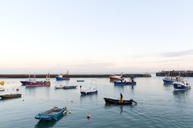 Harbour Fisherman.jpg