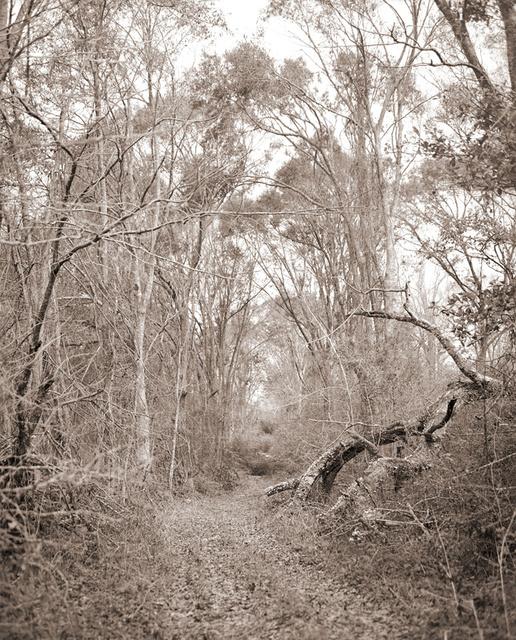 Silver_Road.jpg