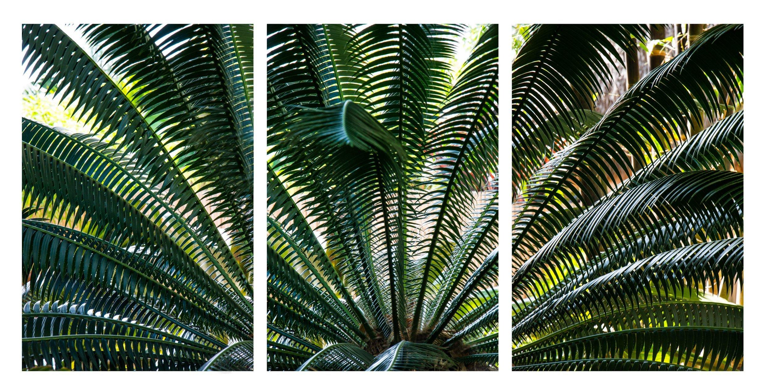 Triptych 110.JPG