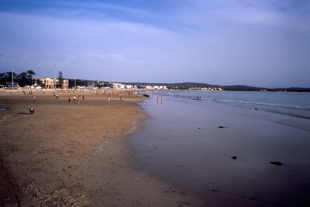 0647_beach_cm_di.jpg