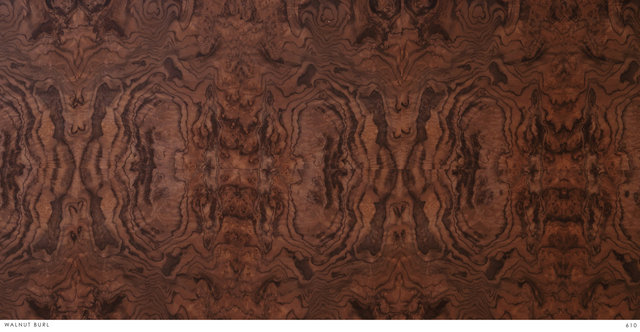 WALNUT BURL 610.jpg