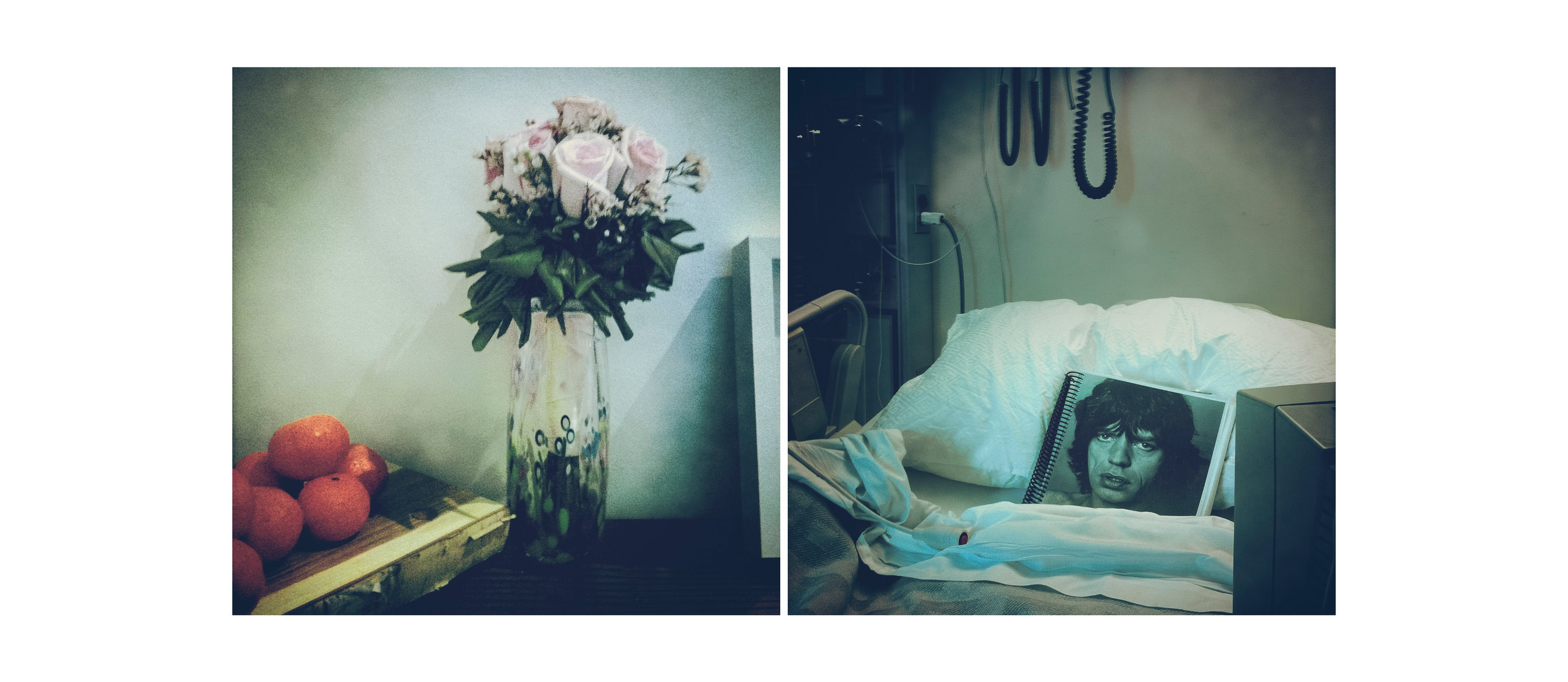 09_Flowers_Jagger.jpg