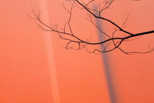 Ton van Bragt: Autumn Finale