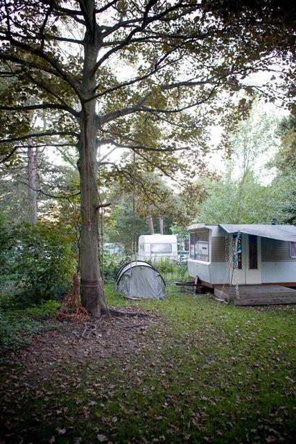 x_x_De Camping_09.jpg