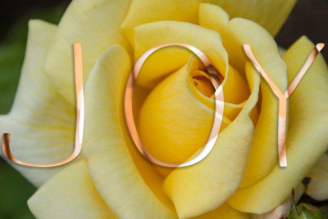 JOY-036c.jpg