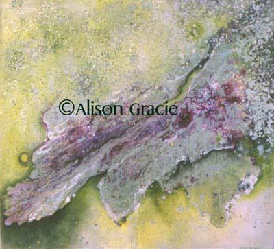 Stardust by Alison Gracie