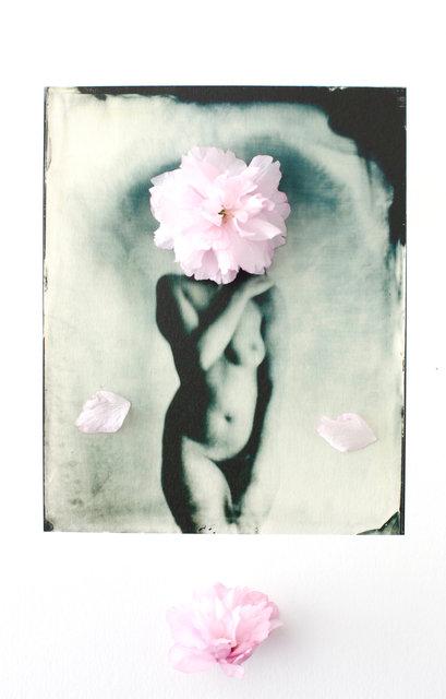 FLOWERS_1_041.JPG