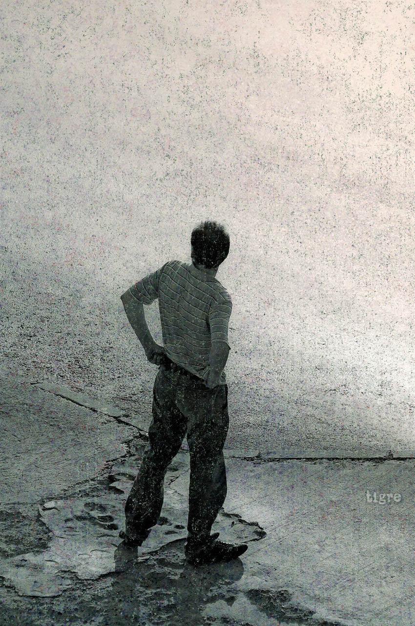 """Peter Edel, """"TIGRE"""", 2013"""